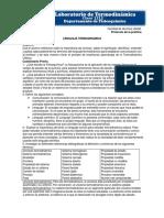 lenguaje termodinamico previo 1.docx
