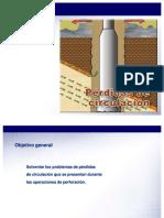 perdidas-de-circulacion.pdf