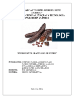 ENERGIZANTE-GRANULADO-DE-CUPESI.docx