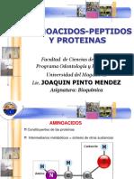 42093275-Aminoacidos-Peptidos-y-Proteinas.ppt