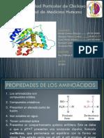 Quimica Exposicion-proteinas Diapositivas