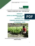 Apoyo Al Desarrollo Fruticola - Punanqui