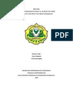 RESUME STEMI IGD.doc