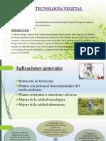 Presentacion Biotecnologia Vegetal