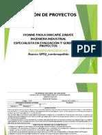 TEMA 1 GENERALIDADES  DE PROYECTOS IQ PDF.pdf