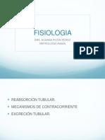 FISOLOGIA TEMA 10