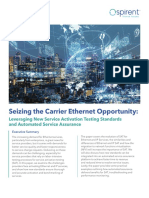 Seizing the Carrier Ethernet Opportunity  A Spirent Whitepaper