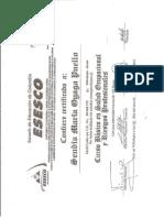 CURSO BASICO EN ESESCO.docx