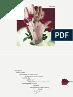 Digital Booklet - Bloom.pdf