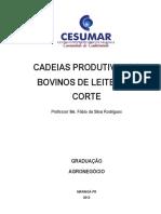 CADEIAS PRODUTIVAS DE bovino leiteiro e de corte.pdf