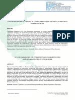 Capacidades Dinâmicas 2069-10809-1-PB