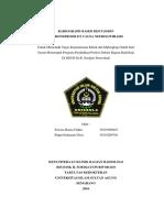 laporan kasus hidronefrosis dan nefrolithiasis  10 JUNI 2015 CETAK.docx