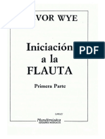 Flauta Iniciación Treovor Wye