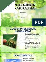 INTELIGENCIA NATURALISTA (1)
