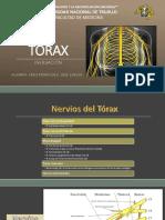 TÓRAX Inervacion.pptx