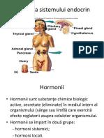 Fiziologia Sistemului Endocrin 1