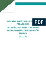 ORIENTACIONES EPT CICLO VII 150319.pdf