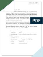 ADOPCION NIFF (3).docx