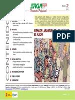 ergafp77 (1).pdf