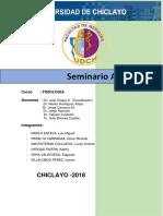 seminario anemia.docx