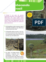 A floresta Brasileira.pdf