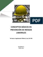 Biblia Prevencion de Riesgos IABA.pdf
