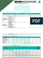 FORMATO DE PROGRAMACIÓN ANUAL 2019 -  I.E. TÚPAC AMARU.docx