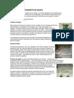ARTESANIA DEPARTAMENTO DE JALAPA.docx