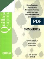 monografia_quillay.pdf