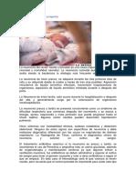 Neumonía connatal o congénita.docx