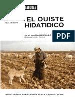 hidatdes.pdf