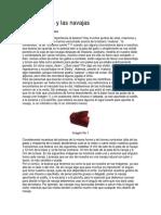 LA NAVAJA DE GALLO NAVAJERO.pdf