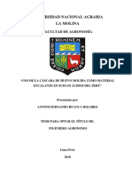 Tesis Huevo Encalado.pdf