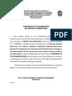 CONSTANCIA DE CULMINACION SERVICIO COMUNITARIO_2019 - copia.docx