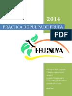 practica de pulpa de guayba.docx