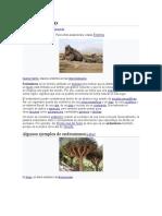 Endemismo y Especie endémica.docx