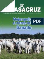 Revista-Fegasacruz-No-9.pdf