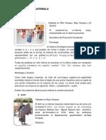 25 lenguas y 22 trajes tipicos de guatemala e imagen.docx