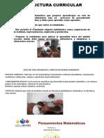 Diapositivas Estructura Curricular