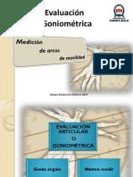 goniometria MMSS - 2010