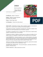 PINHÃO ROXO.docx