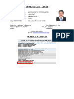 PERFIL PDU CV.docx