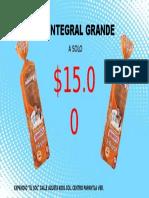 PAN INTEGRAL.pptx