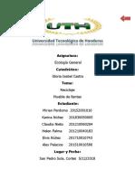 ECOLOGIA-Proyecto Final.