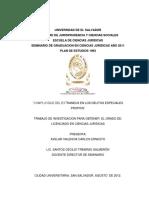 Complicidad del Extraneus en los Delitos Especiales Propios..pdf