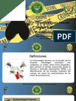 6.- ENTOMOLOGIA FORENSE.pdf