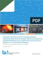 GPG Guias De Buenas Prácticas - 2013 Spanish version.PDF