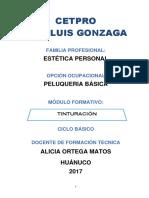 21 TINTURACIÓN 2017-1.docx