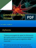 123506631 Clasificacion de Los Huesos PDF