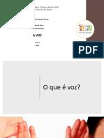 A VOZ - fafi.pdf